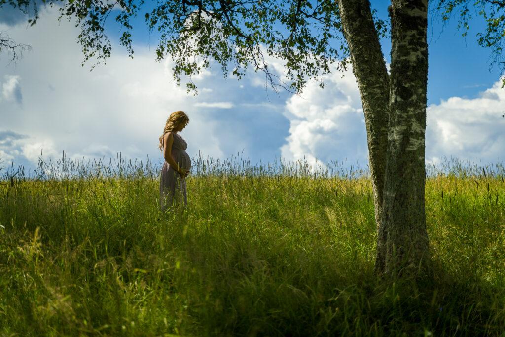 Porträtt av gravid kvinna i vetefält Fagerås